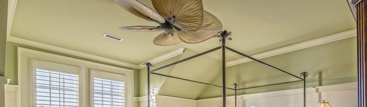 Respetar el entorno, decorar tu casa.